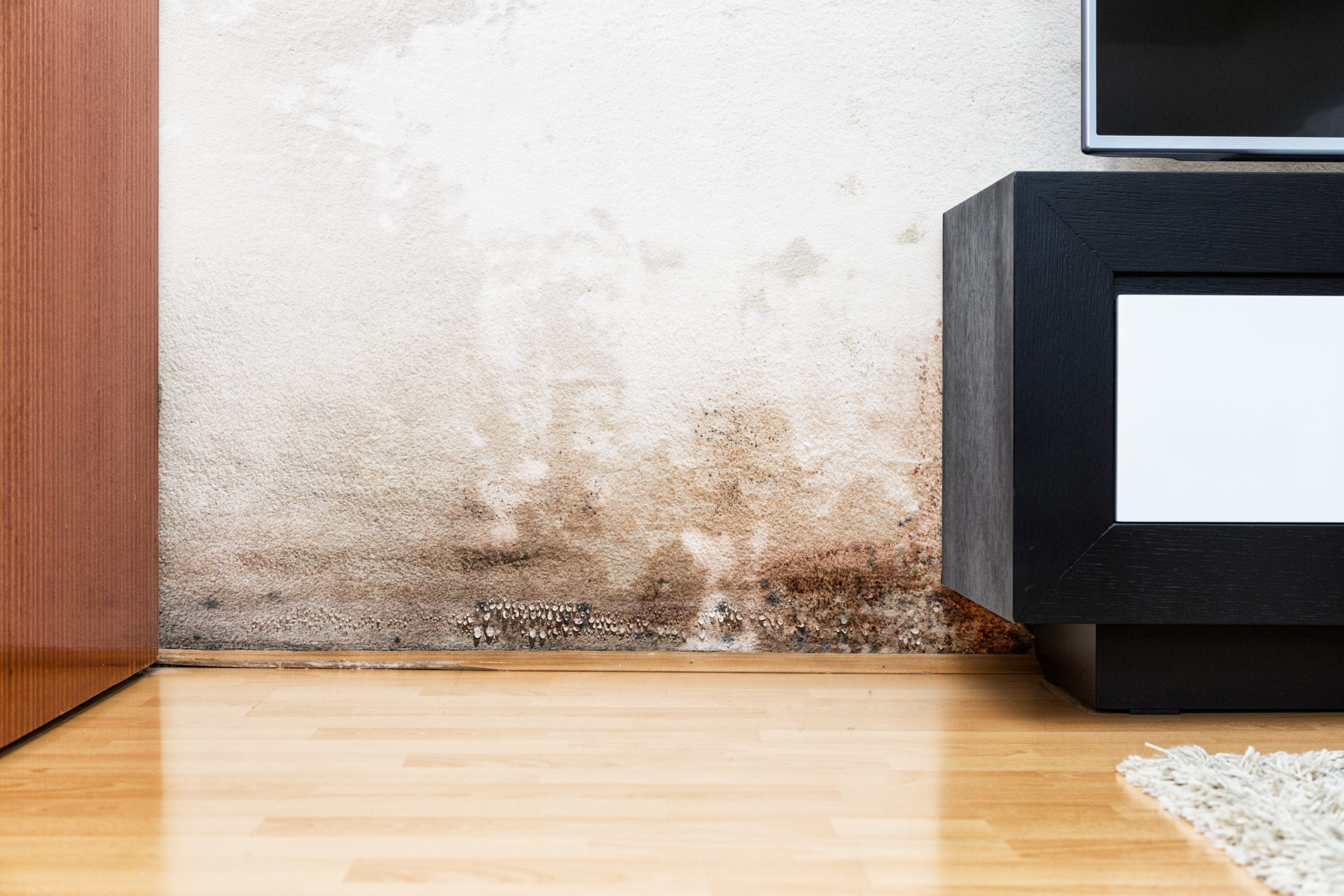 How Does Humidity Affect Indoor Air Quality?